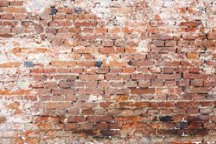 old_brick_wall_202832