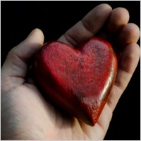 red_heart_in_hands_212333