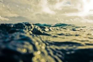Sea macro wave