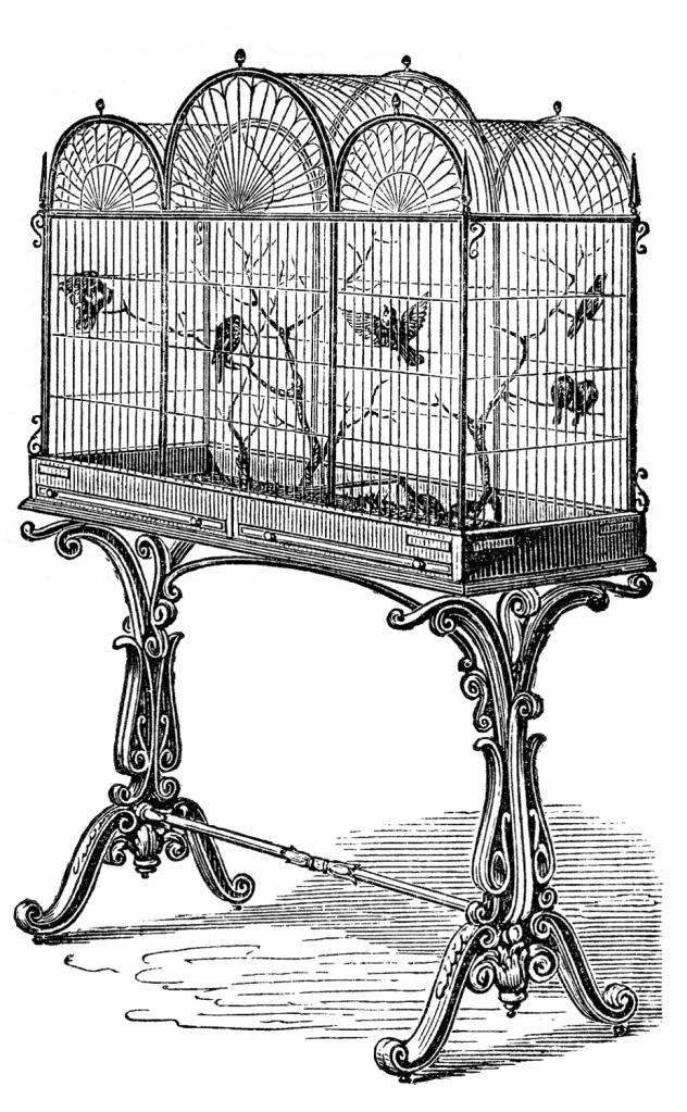 Bird-Cage-Stock-Image-GraphicsFairy